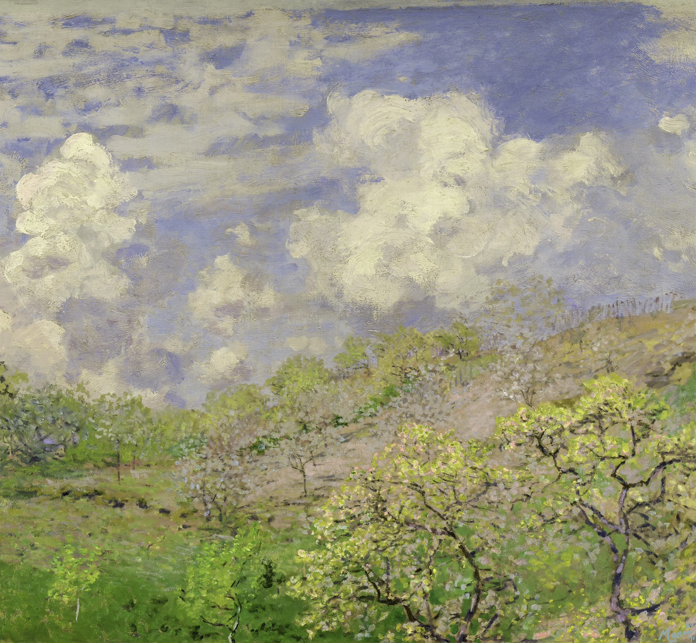 a springtime scene of trees on a hill with blue and pink flowers